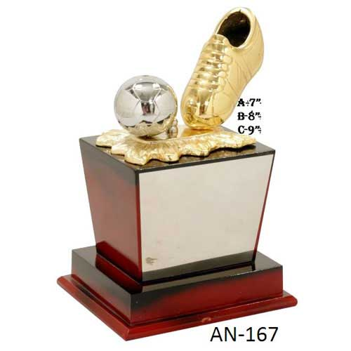 Football Trophy Manufacturers in Dehradun