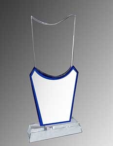 Budget Trophy Manufacturers in Raipur