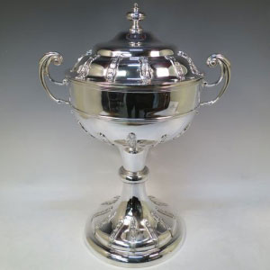 Silver Trophy Manufacturers in Indore