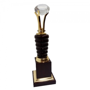 contribution award Manufacturers in Delhi