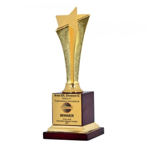 corporate award Manufacturers in Delhi