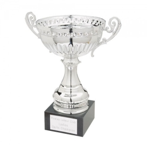 silver trophy Manufacturers in Delhi